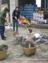 中文系开展贫困生感恩回馈活动