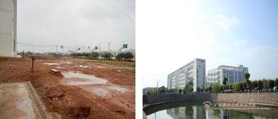 2011年以前的校园绿化-如今的校园绿化