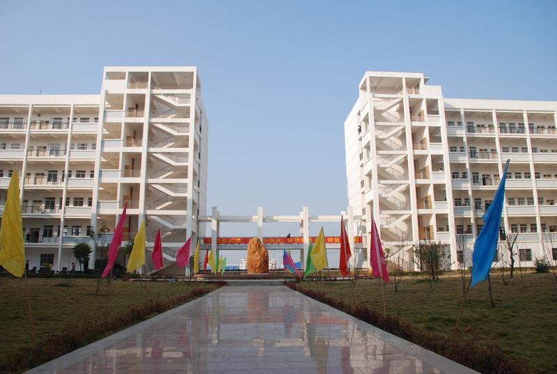 2011年建设中的校园,绿化